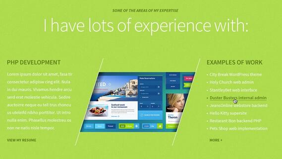 品牌网站案例