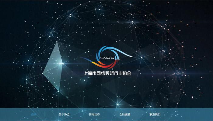 上海视听协会企业网站